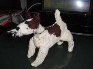 Wirehaired fox terrier knitted side