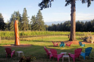 Post image for Vegan Wine in BC, Canada – An Updated List