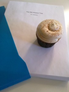 Pumpkin Spiced Cupcake and the novel